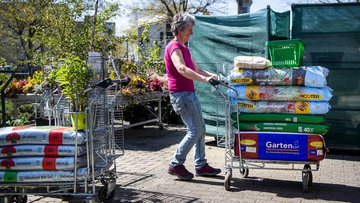 Erde kauften unsere Leserinnen und Leser am Montag besonders oft: Umtopfen und einpflanzen ist angesagt!