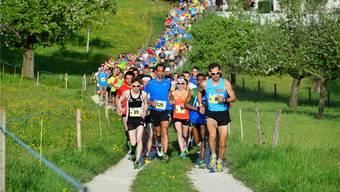 683 Läuferinnen und Läufer waren im vergangenen Jahr am Tüfelsschlucht-Berglauf in Hägendorf am Start. Fällt morgen die Rekordmarke von 700 Teilnehmerinnen und Teilnehmern aus dem Jahr 2011?
