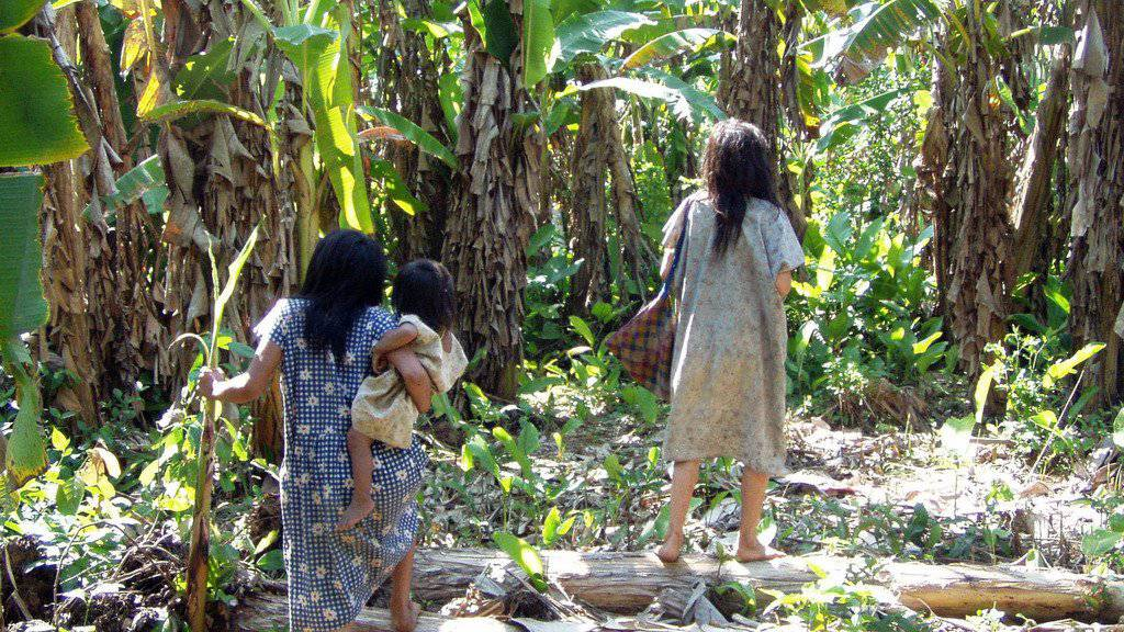 Weibliche Mitglieder des Tsimane-Stammes. Laut Forschungsergebnissen sind die Arterien von Amazonas-Ureinwohnern in Bolivien gesünder als bei allen anderen bislang gemessenen Menschengruppen. (Archiv)