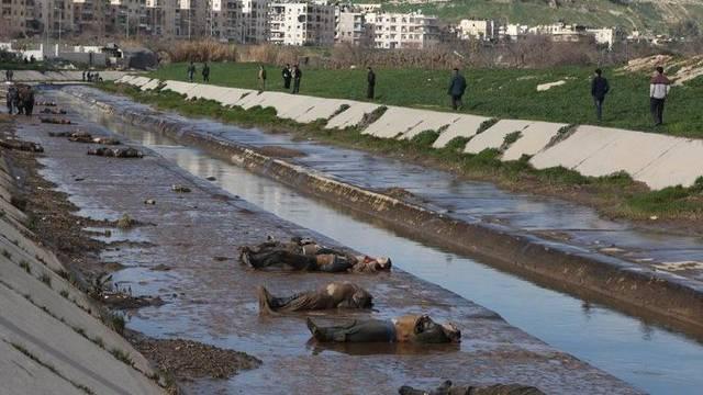 Einige der 65 in Aleppo gefundenen Leichen, an einem Kanal aus einem regierungsfreundlichen Viertel