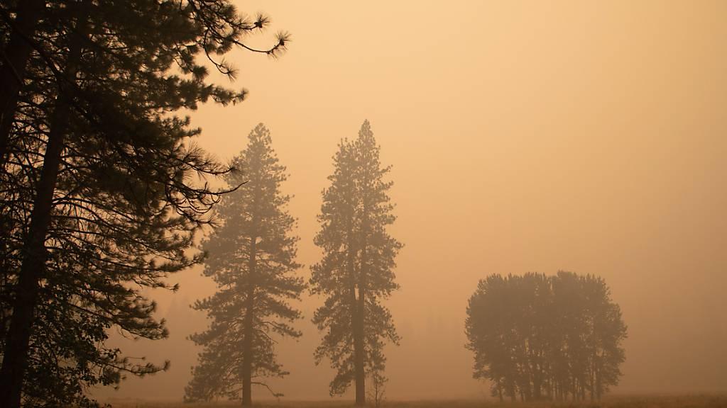 Yosemite-Park macht nach Schliessung wegen Waldbränden wieder auf