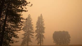 Dichter Rauch zieht über das Yosemite Valley. Der Nationalpark wurde vorübergehend aufgrund der schlechten Luftqualität geschlossen. Foto: Chuck Bennett/AP/dpa - ACHTUNG: Nur zur redaktionellen Verwendung im Zusammenhang mit der aktuellen Berichterstattung und nur mit vollständiger Nennung des vorstehenden Credits