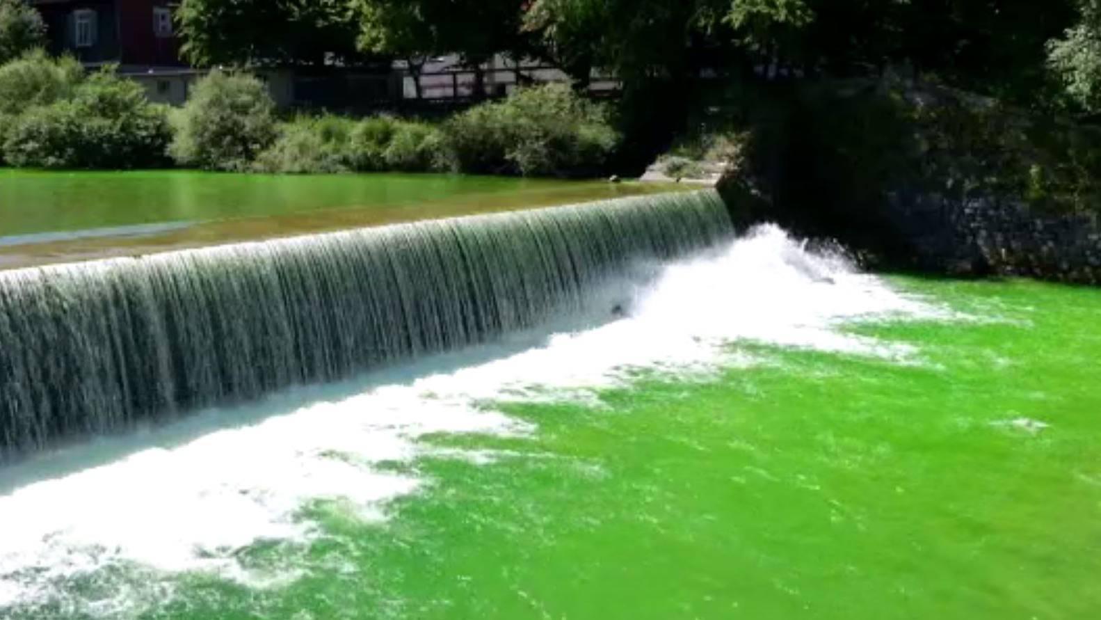 Die Sitter wurde wegen Wassertest am Sonntag mit giftgrüner Farbe eingefärbt.
