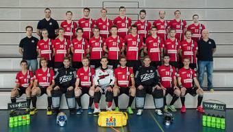 Das Aufstiegsteam aus Basel möchte in der NLB gleich auf Anhieb den Einzug in die Playoffs schaffen.