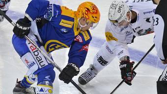 Der HCD-Topskorer (links) gewinnt Bully und Spiel gegen Fribourg-Gottéron
