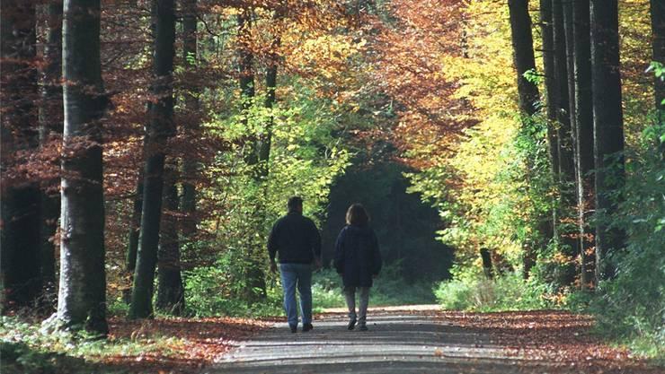 Gerade in der Agglomeration kommt dem Wald eine besondere öffentliche Funktion zu.