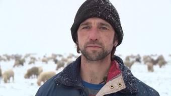 Vier Monate lang ist Tony Felder aus Safenwil jeden Tag mit seinen Tieren draussen. Bei jedem Wetter.