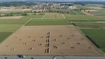 Mysteriöses Bild von oben: die Grabungen auf dem Acker nahe Kestenholz.