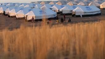Irakische Flüchtlinge in einem Lager ausserhalb von Erbil