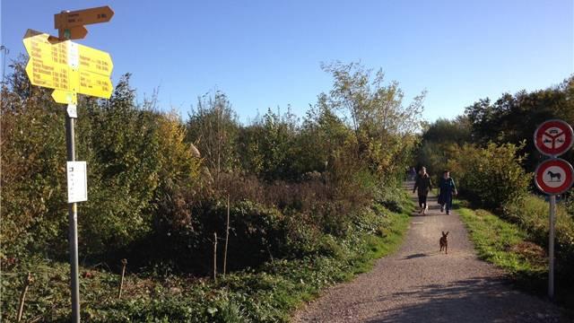 Geniessen, so lange es geht: Spaziergänger am Montagmittag an der Aare.