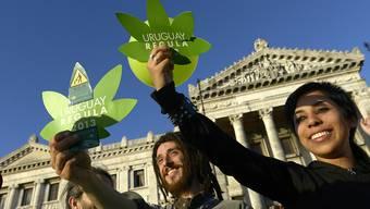 In Uruguay gibt es nun Marihuana ganz legal in Apotheken zu kaufen. (Archivbild)
