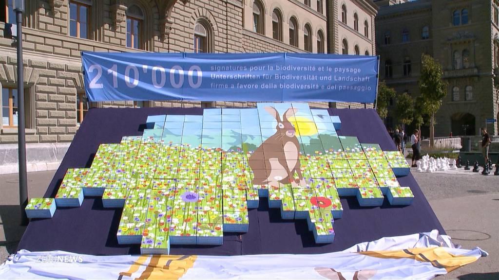 Doppelinitiative mit riesigem Berg an Unterschriften eingereicht