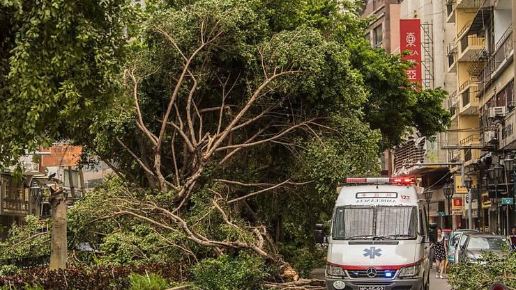 Sturmschäden in den Strassen von Macau