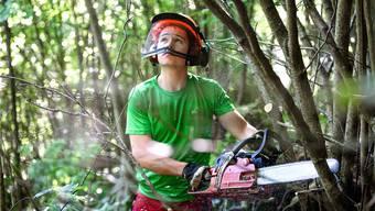 Die Forstwartlernenden des Betriebs Thiersteinberg in Gipf-Oberfrick vermögen mit ihren Kollegen die Abgänge der Branche nicht zu kompensieren.