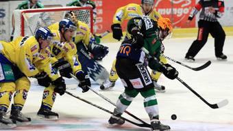 Eishockey-Derby Olten - Langenthal