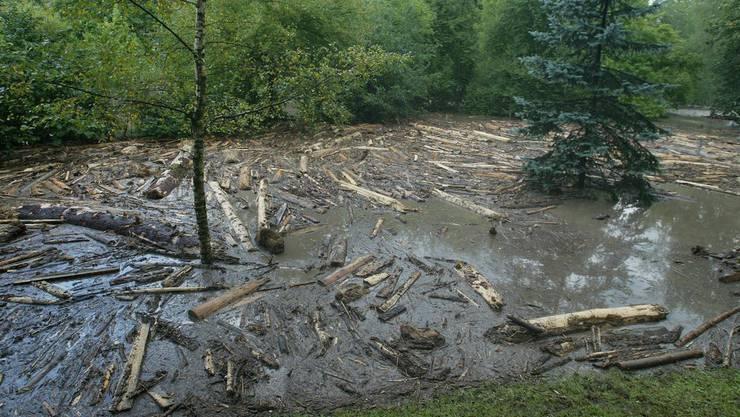 Bei einem Hochwasser wird Schwemmholz angetrieben (Symbolbild)