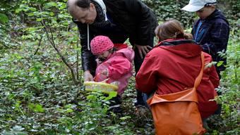 Die Ostereiersuche im Garten der Villa Langmatt war zwar für Kinder gedacht, doch rasch wurde sie zu einer Familienangelegenheit.dvi