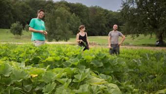 Mit ein bisschen Idealismus bieten die «Gmüeser» Thomas Urech, Martina Räber und Dominik Bisang Produkte aus nachhaltiger Produktion an.