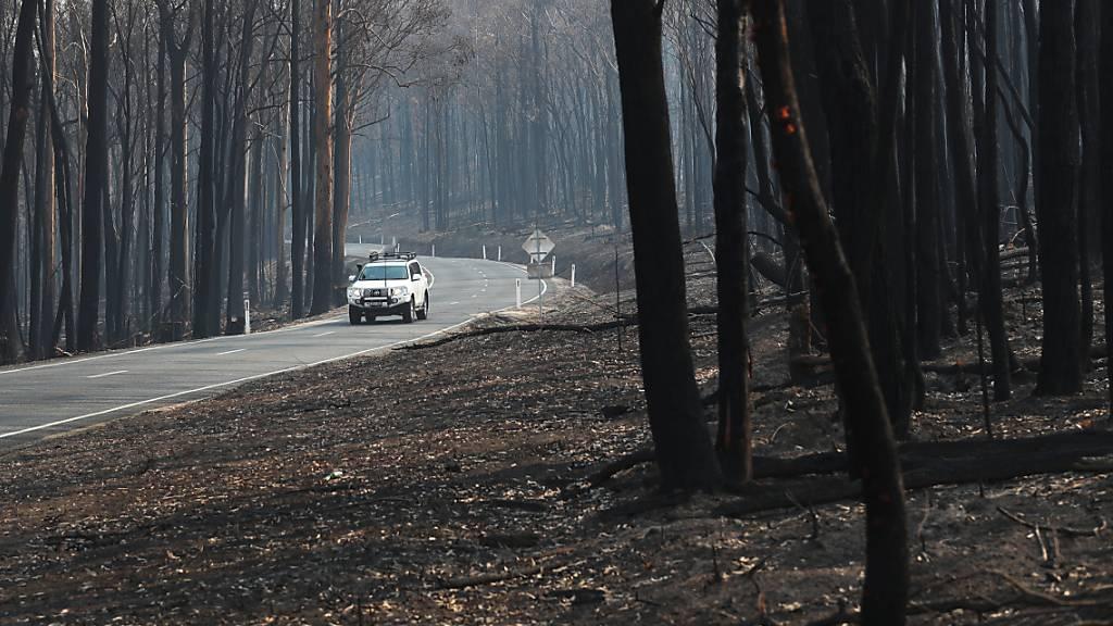 Australischer Bundesstaat lässt Feuer untersuchen