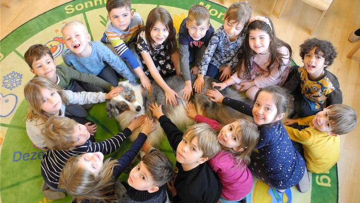 Gruppenbild mit Jojo: Der Australian Shepherd und die Kaiseraugster Kindergärtler haben sich gut aneinander gewöhnt.