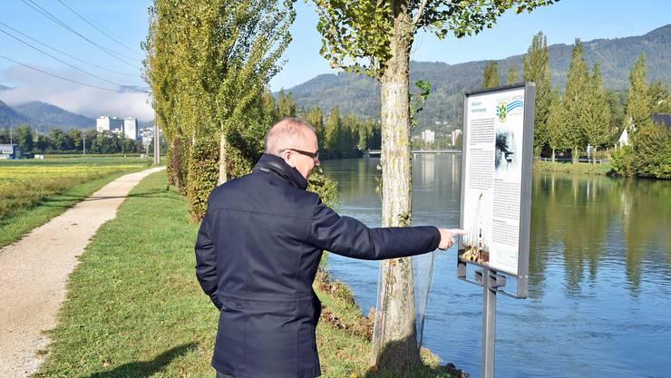 «Beim Bau des Aarekanals war vorgesehen, ein Industrieanschluss von Olten bis hier in die Ebene von Winznau zu verlegen. Darum wurde der Damm so breit und stark ausgeführt», berichtet Daniel Gubler.