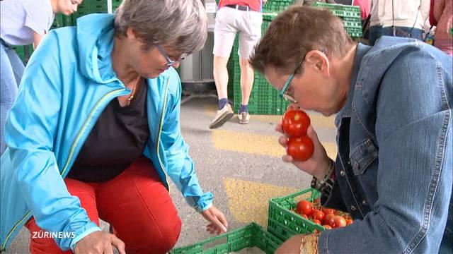 Anti-Foodwaste-Aktion für 30 Tonnen Tomaten voller Erfolg