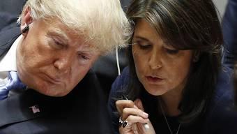 """""""Einen Präsidenten zu untergraben ist wirklich eine gefährliche Angelegenheit"""": Nikki Haley, frühere US-Botschafterin bei der Uno. (Archivbild)"""