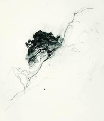 «Baum als Felshang» (1927)