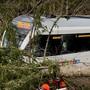 Der Regionalzug, der bei Wald (ZH) in einen Baum gefahren ist.