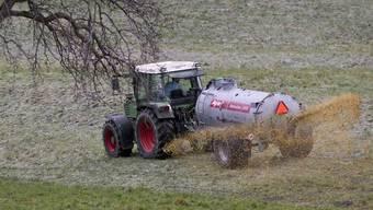 Die Landwirtschaft war grosser Verliere 2012 - für 2013 prophezeit die Wirtschaftsstudie kaum Verbesserungen. (Symbolbild)