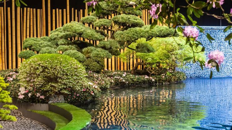 Um diesen Garten mit Koi-Teich und 180 Jahre altem Bonsai aufzubauen, ist Reinhold Borsch mit 18 Lastwagen aus Düsseldorf angefahren.