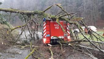 Bei der Polizei Basel-Landschaft gingen rund 165 Meldungen wegen dem Sturm Burglind ein. Eine Vielzahl an umgestürzten Bäumen führten zu etlichen Strassensperrungen im ganzen Kanton. Verletzt wurde niemand.
