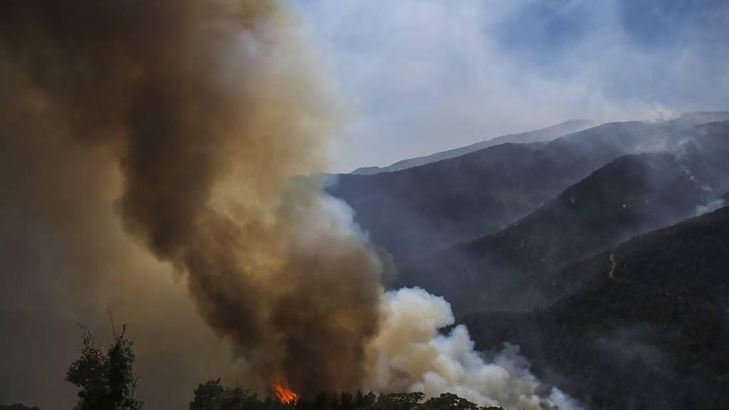 Rauch und Flammen steigen empor während eines Waldbrandes in Koycegiz. Seit dem 28. Juli kämpfen Einsatzkräfte gegen die massiven Waldbrände inmitten einer heftigen Hitzewelle. Foto: Emre Tazegul/AP/dpa