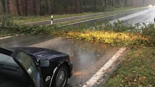 An manchen Orten behinderten umgekippte Bäume die Strassen, allerdings kam es nirgendwo zu grösseren Verkehrsbehinderungen. (Symbolbild)