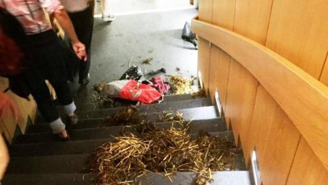 Aktivisten stören Kongress an ETH und werfen Mist und faule Eier.