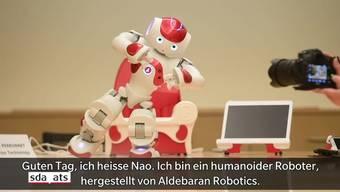 Roboter Nao zeigt sein Können.