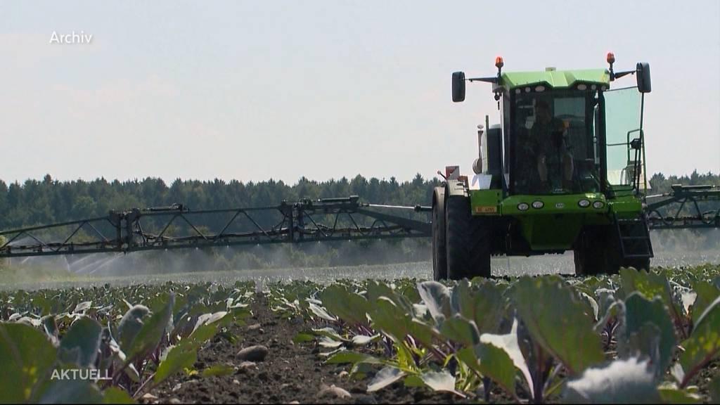 Fast alle Bio-Felder mit Pestiziden verseucht