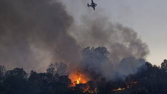 Ein Waldbrand in Nordkalifornien hat einen Grosseinsatz der Feuerwehr ausgelöst. Rund 600 Einsatzkräfte kämpfen gegen das Feuer im Bezirk Solano.