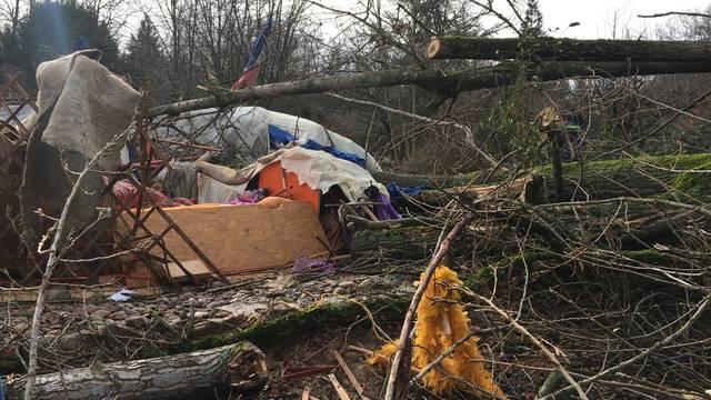 Ein entwurzelter Baum hat eine Frau in Riehen erschlagen.