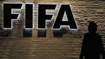 WM in Katar: Keine Ruhe für die FIFA