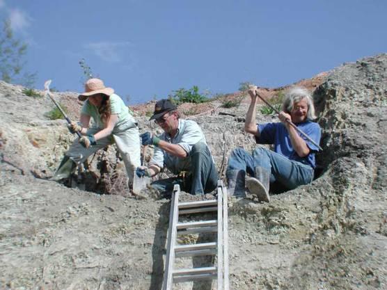 Bei der Suche nach Dinoknochen ist Handarbeit gefragt, rechts Grabungsleiter Ben Pabst