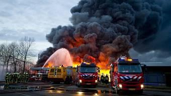 Dutzende Feuerwehrleute in Moerdijk im Einsatz