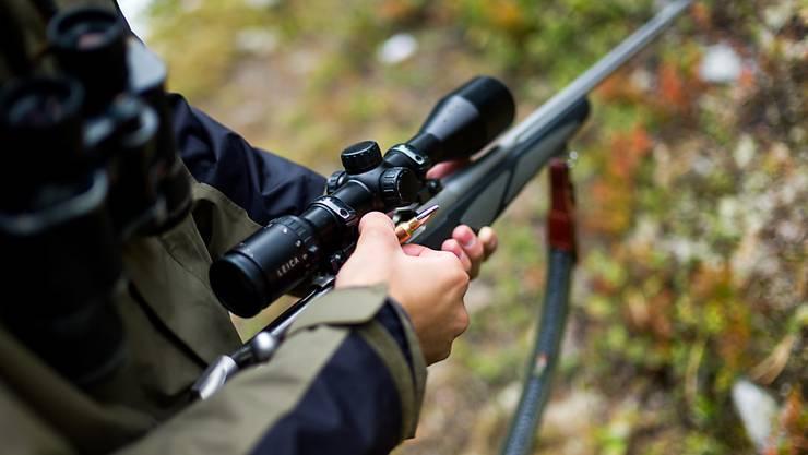 Wildtiere schiessen, um den Bestand zu regulieren. So rechtfertigen Jäger ihr Handwerk. (Symbolbild)