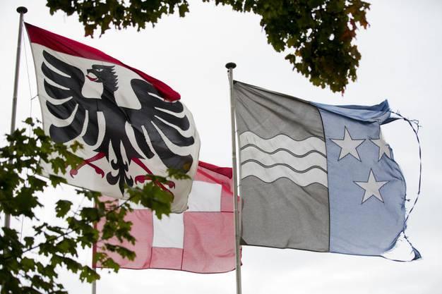 Auch Gemeindewappen im Aargau tragen Adler: Hier der Adler von Aarau.