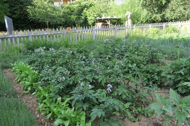 Mit der Gestaltung eines Bauerngartens nimmt Imhof die ursprüngliche Idee des Museumsgartens als historischer Garten wieder auf.