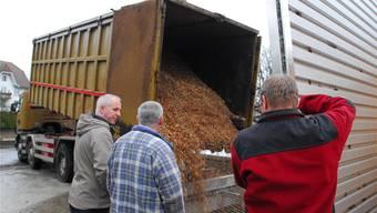 Fachleute der Bürgergemeinde und des Ofenbauers beobachten, wie die allererste Ladung Holzschnitzel in der Anlage landet.