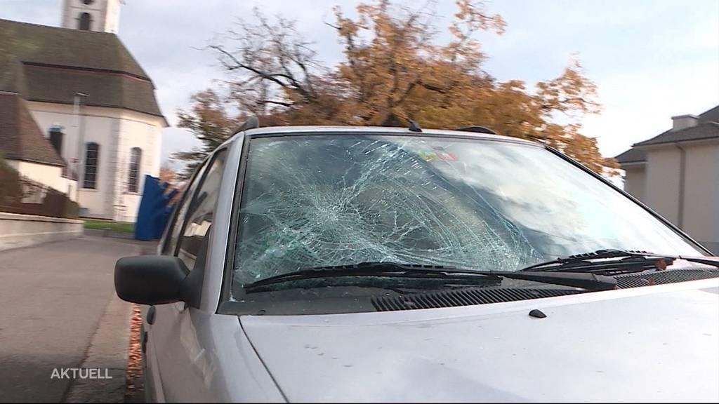 Auto in Grenchen demoliert