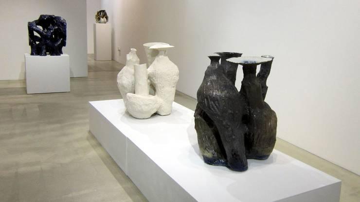 Johannes Nagel im Kunstforum Solothurn.