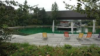 Stillgelegte Klärbecken in der Kläranlage Werdhölzli bauten ERZ-Mitarbeitende zur Badelandschaft um. Matthias Scharrer