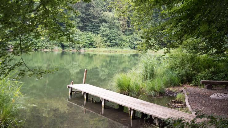 Der Egelsee soll ein Ort der Natur, Ruhe und Erholung bleiben.